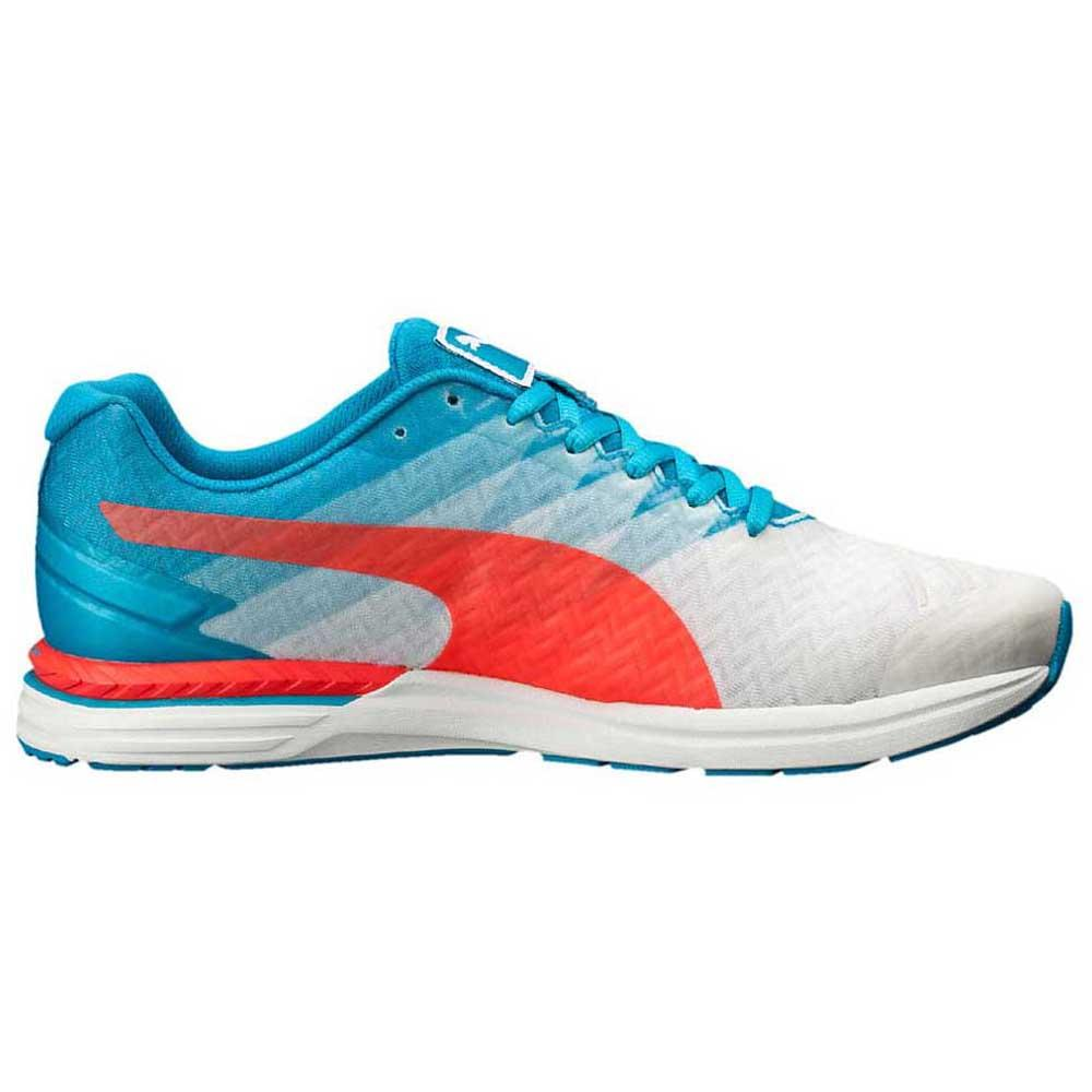 42ab709d45e82f Puma Speed 300 Ignite buy and offers on Runnerinn
