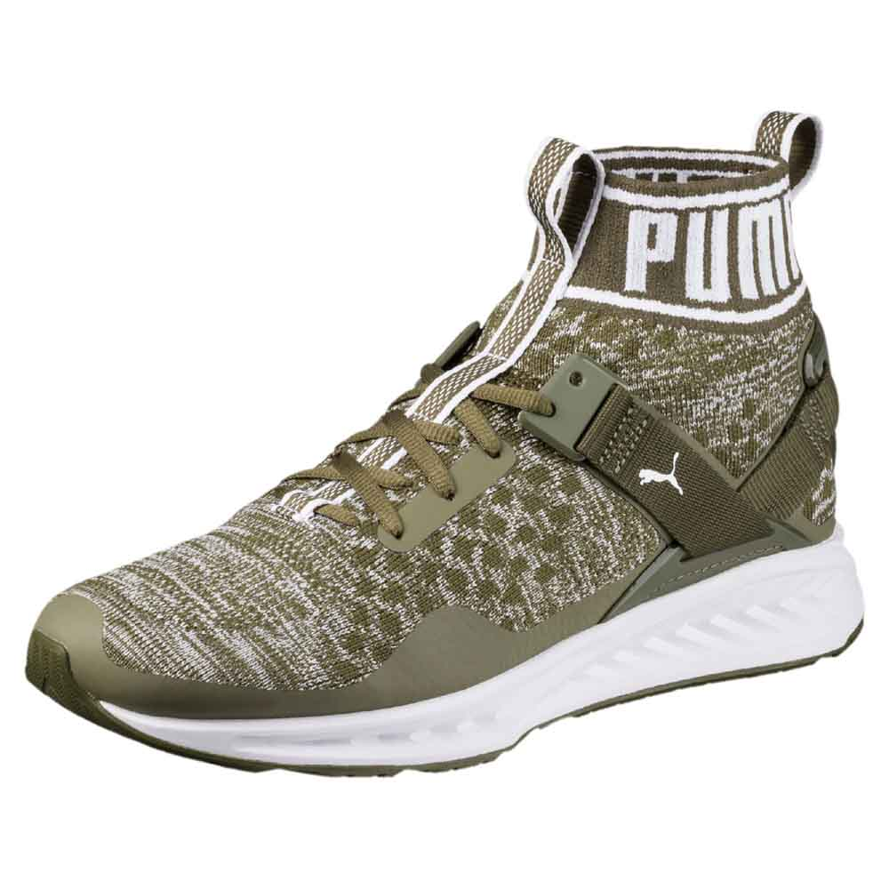sports shoes b6d90 8dd68 Puma Ignite EvoKnit Green buy and offers on Runnerinn