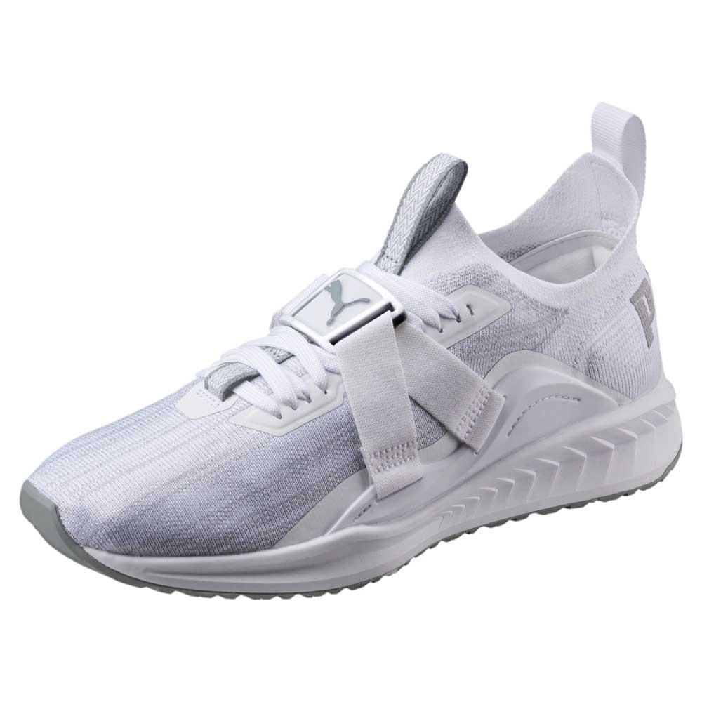 more photos 62cbc 6eda2 Puma Ignite Evoknit Lo 2 buy and offers on Runnerinn