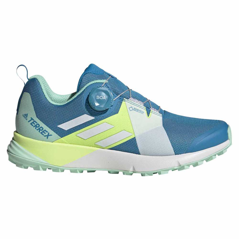 Derretido Saca la aseguranza seré fuerte  adidas Terrex Two Boa Goretex Blue buy and offers on Runnerinn