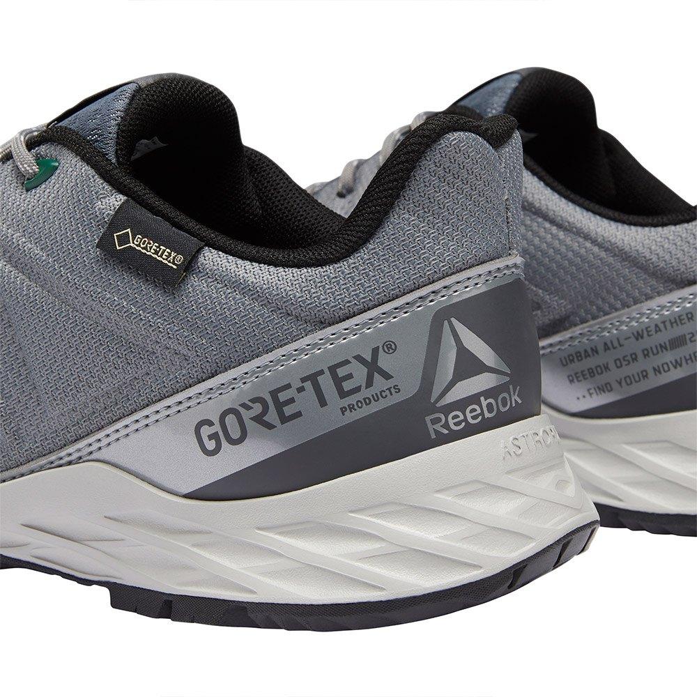 Reebok Astroride Trail 2.0 Goretex Grey