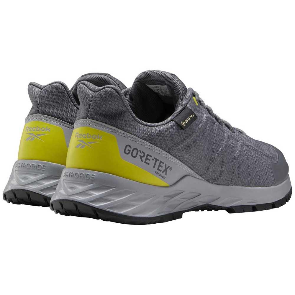 Reebok Astroride Trail Goretex 2.0 Grey
