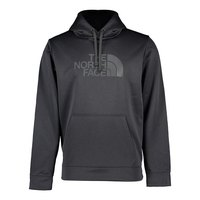 The north face Surgent Halfdome Po Hoodie